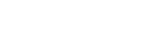 Charter schools serve a similar proportion of students with special needs (11 percent) as traditional public schools (14 percent).